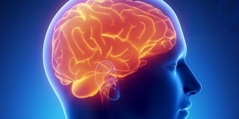 De invloed van social media op onze hersenen